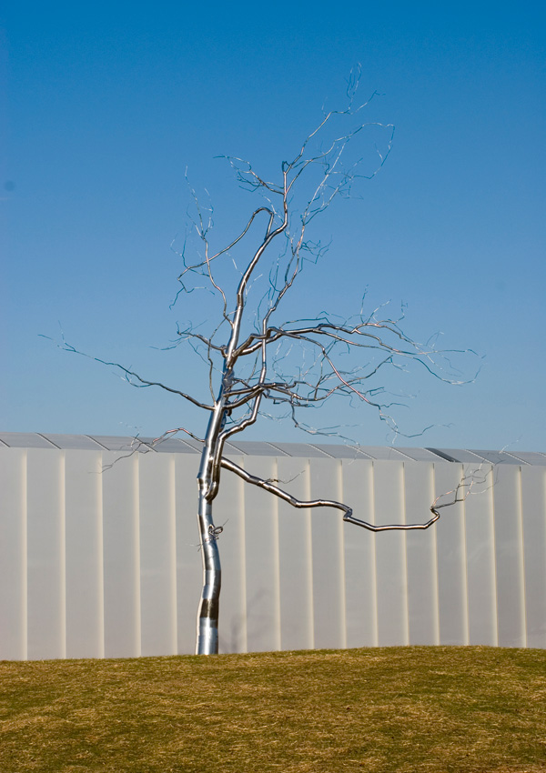 Askew, Roxy Paine, American, 2009 (stainless steel) North Carolina Museum of Art